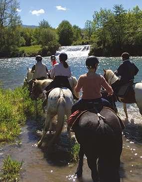 randonnée-cheval64